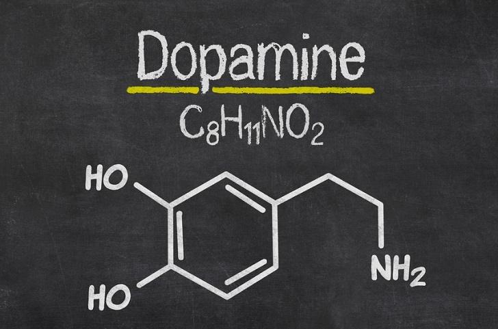https://psychedelische-therapie-nederland.nl/wp-content/uploads/2020/01/dopamine.jpg